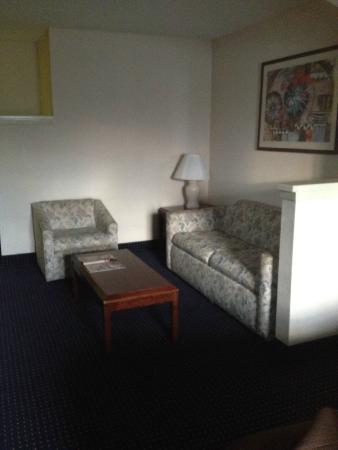 Magnuson Hotel Park Suites : Couch, smelled a bit musty