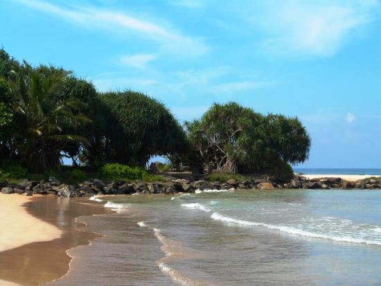 Hotel Hemadan : beach