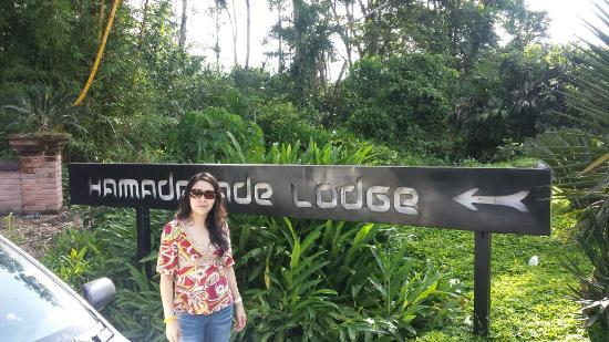 Hamadryade Lodge: Entrada