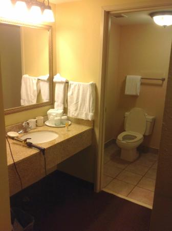 Chicago Club Inn Suites: The bathrrom