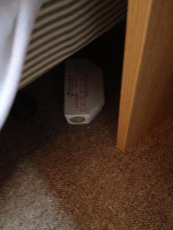 The Lansdowne Hotel: Mouse bait box under bed