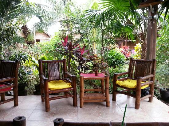 Reggae Guesthouse: View from the bar