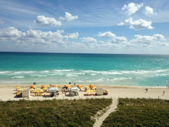 Hilton Cabana Miami Beach View Of The And Ocean