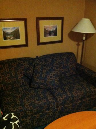 Econo Lodge Inn & Suites University: nice couch