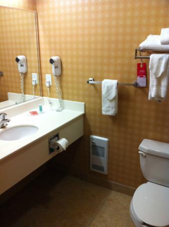 Econo Lodge Inn & Suites University: Clean bathroom!