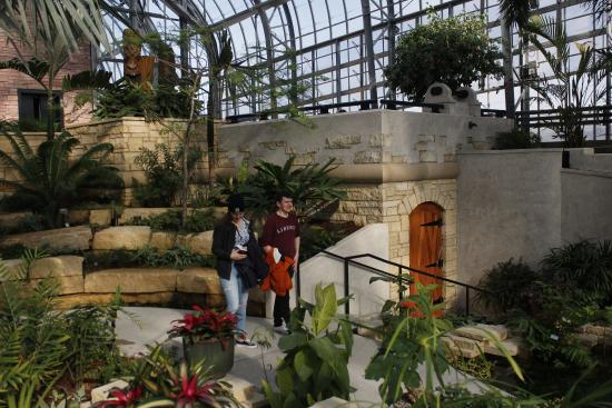 In The Conservatory Upper Level Tropical Climate   Picture Of Lauritzen Gardens  Omahau0027s Botanical Center, Omaha   TripAdvisor