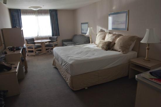 شيلو إن سويتس هوتل - وارينتون: View of Room