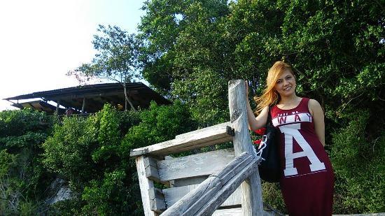 Bohol Bee Farm: ビーチからレストランを望む