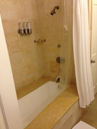 German Village Guest House: Amazing shower/soaking tub