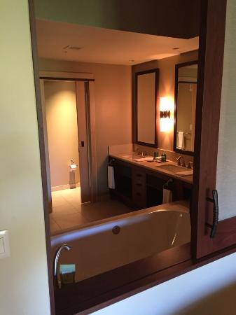 Bathroom Seen From Bedroom Thru Sliding Window Over Tub