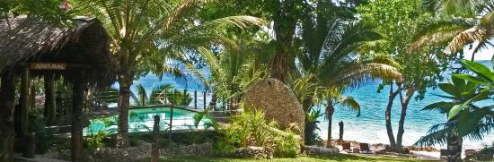 Paradise Cove Resort: garden and beach