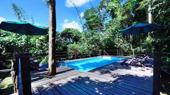 Sukau Rainforest Lodge: Enjoy our Brand new Plunge Pool