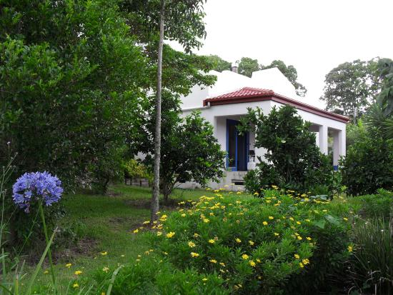 Spicy Oasis: Villa viewed from gardens