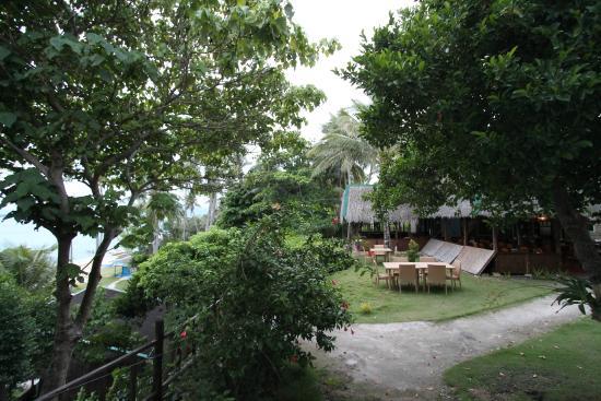 Pura Vida Cabilao: hoger gelegen terrein