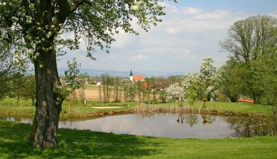 Euratsfeld, Austria: 3 km zum Golfplatz