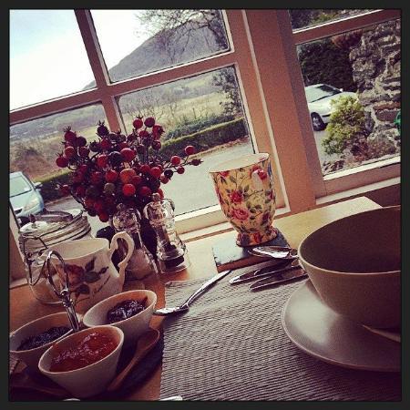 Bwlch y Fedwen Bed & Breakfast: Lovely breakfast with lovely views