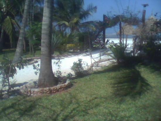 Villa Dida : vialetto di accesso alla spiaggia