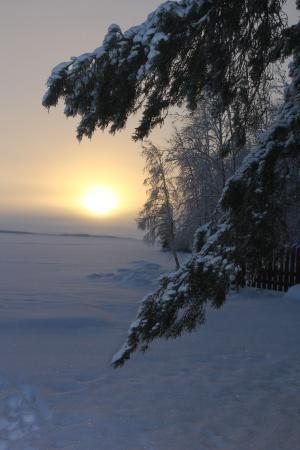 Pyhajarvi, Finlandia: Природа