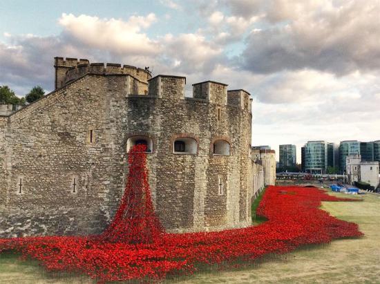O Tours de Londres - Visites guidees: x
