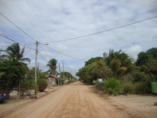 Parrot Cove Lodge : Hopkins' main road
