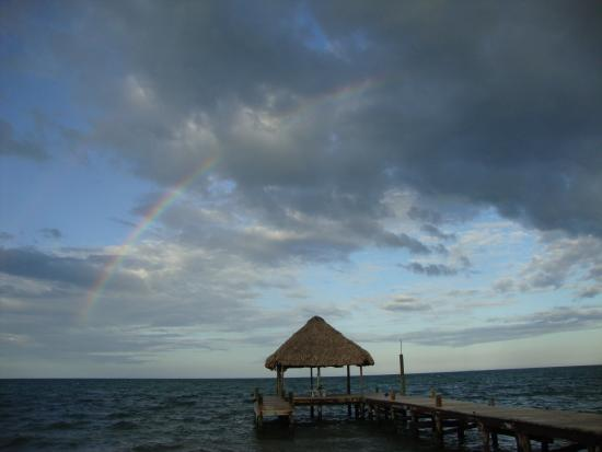 Parrot Cove Lodge : Arcobaleno