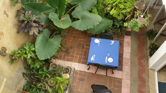 Foto de casa azul santiago de cuba giardino interno - Giardino interno casa ...