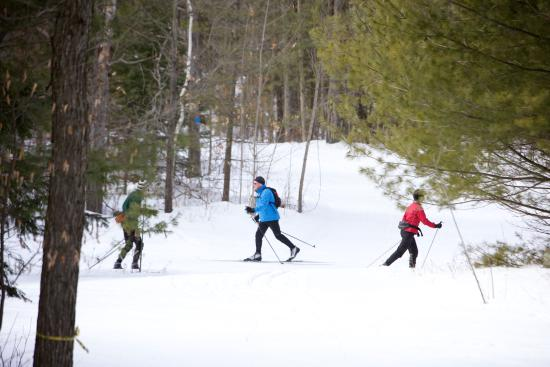 Peterborough, Canada: Cross Country Skiing at the Kawartha Nordic Ski Club