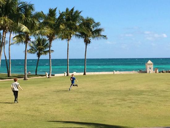 Grand Lucayan, Bahamas : Grand Lawn