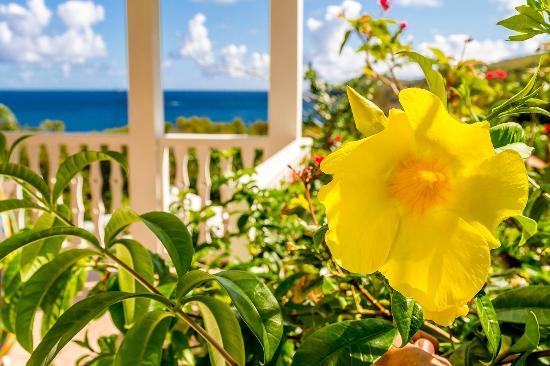 Residence Oceane Hotel : Résidence Océane Martinique Tartane