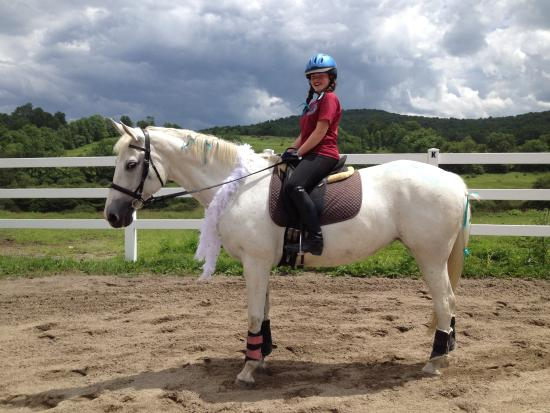Cooperstown Equestrian Park: Horse Camp July 2014