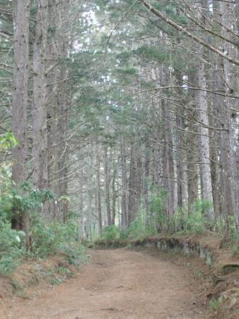 Parque Nacional El Imposible: Caminata