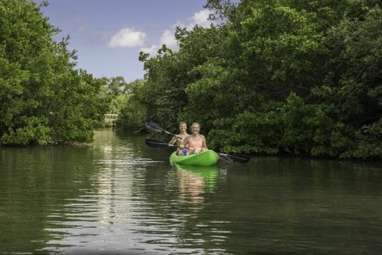 Hyatt Regency Sarasota: Just outside our marina exploring mangrove tunnels