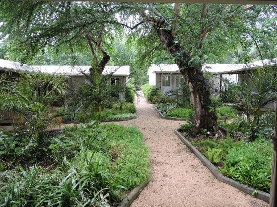 Vanilla House: jardin