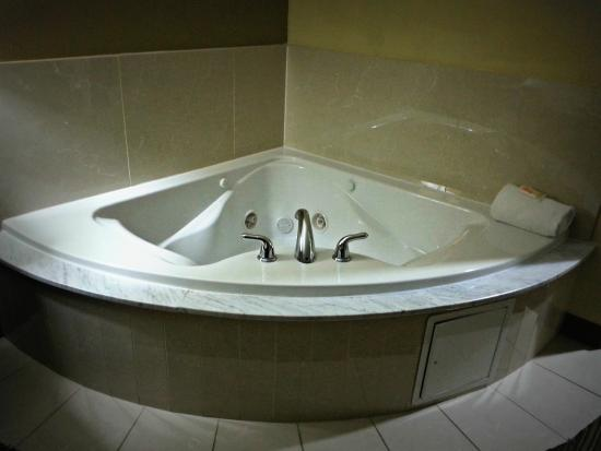 In Room Jacuzzi Picture Of Holiday Inn Mobile Airport Tripadvisor