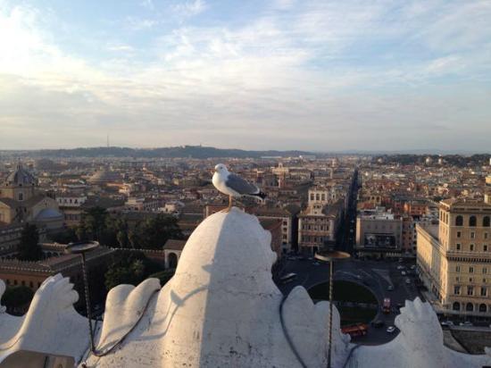 Il vittoriano - Picture of Roma dal Cielo Terrazza delle Quadrighe ...