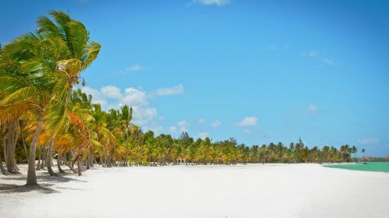 Palapa Juanillo Wedding Restaurant And Venue Beach S Location