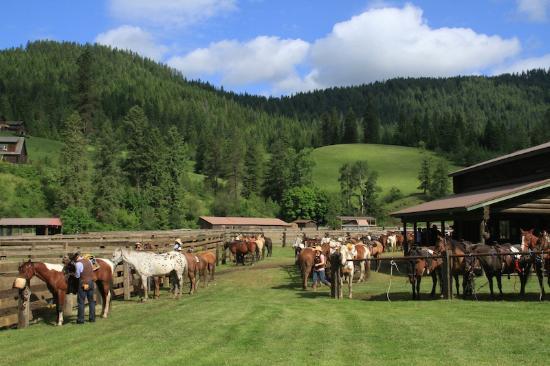 Tack Barn at Red Horse Mountain Ranch