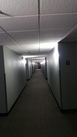 Wyndham Garden Dallas North: hallways smell like dirty mop water masked by odor eliminator