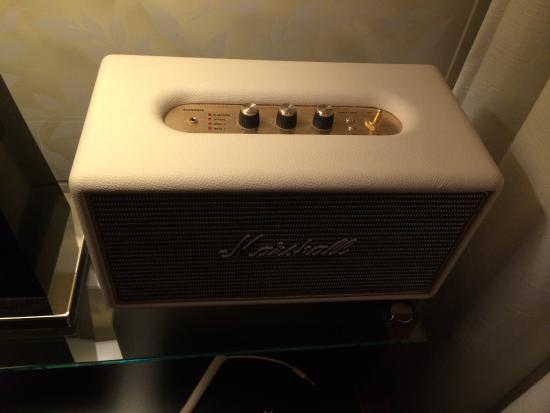 Best Bluetooth speaker! - Picture of Elite Eden Park Hotel