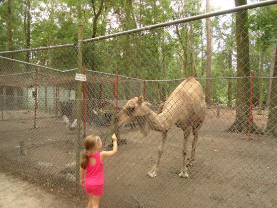 Waccatee Zoo Myrtle Beach