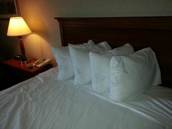 Ramada Jacksonville/Baymeadows Hotel & Conference Center: Pillows to