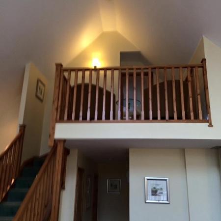 Luxury Woodland Lodges at Macdonald Aviemore Resort: view looking up