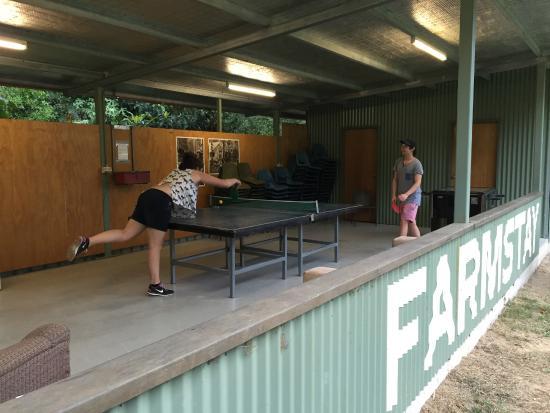 Hosanna Farmstay : Table Tennis