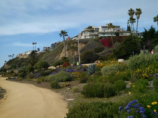 San Clemente, CA: Lovely trail and gardens on the path