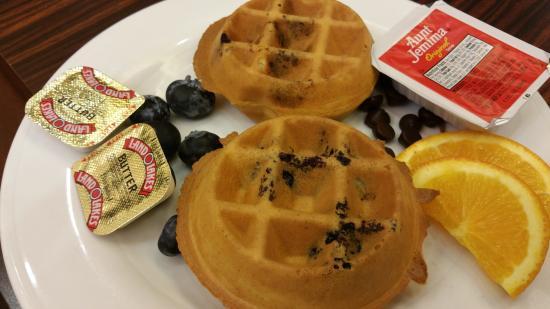 Hilton Garden Inn Fort Worth Medical Center: 1 fresh blueberry; 1 fresh chocolate chip waffle.  Delish!!