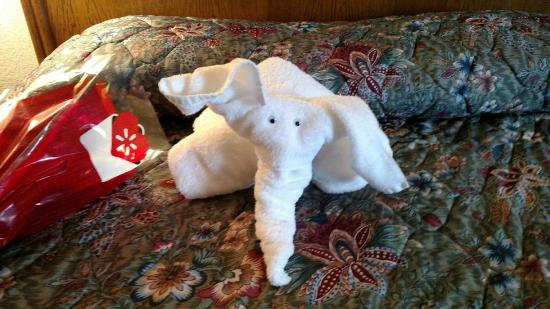 Arbors at Island Landing Hotel & Suites: Daughter loved the elephant made of towels.