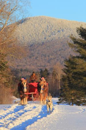Lake Placid Sleigh Rides: Never ending mountain views - group sleigh ride