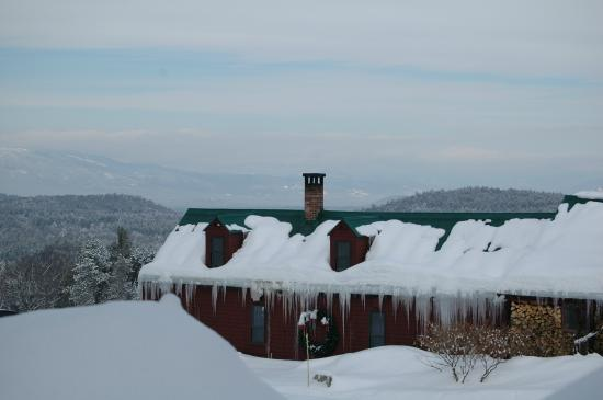 Brookhirst Farm Bed & Breakfast: White Mountains (no pup intended)
