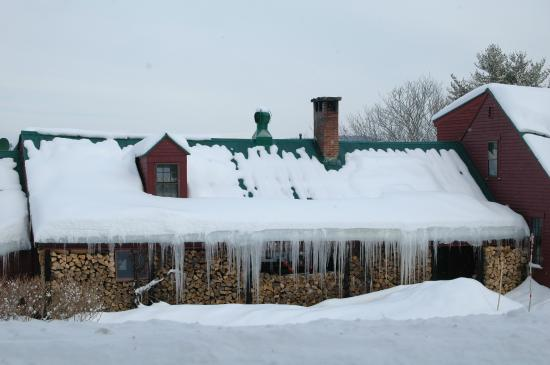 Brookhirst Farm Bed & Breakfast: plenty of firewood for the fireplace