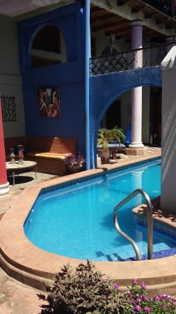 Hotel Casa Capricho: The pool